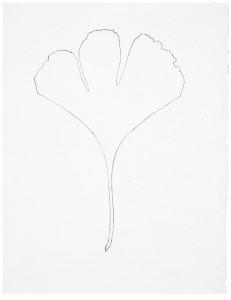 Arborescences 18