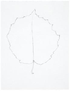 Arborescences 17